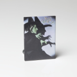 Wizard of Oz Wicked Witch Mirror